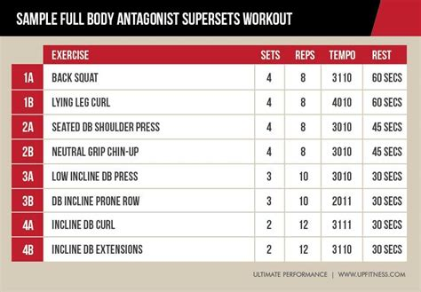 Why Antagonist Supersets Might Be the Most Time-Efficient