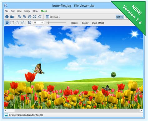 File Viewer Lite for Windows - View any File on Your
